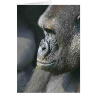 Tarjeta de felicitación del gorila de montaña