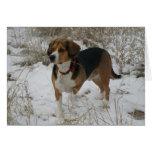 Tarjeta de felicitación del invierno del beagle de