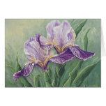 Tarjeta de felicitación del iris de 0455 púrpuras