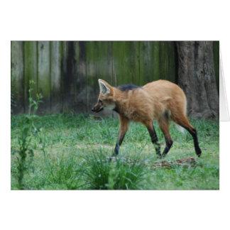 Tarjeta de felicitación del lobo crinado