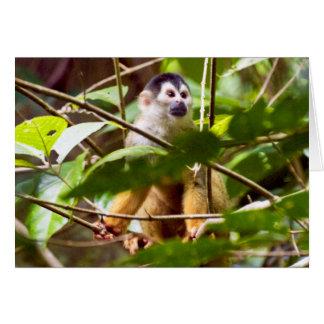 Tarjeta de felicitación del mono de ardilla