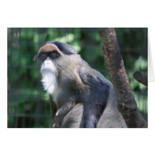 Tarjeta de felicitación del mono de DeBrazza