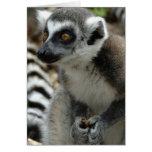 Tarjeta de felicitación del mono del Lemur