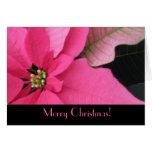 Tarjeta de felicitación del navidad del Poinsettia
