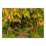 Tarjeta de felicitación del paseo del jardín