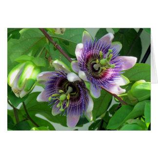 Tarjeta de felicitación del Passionflower