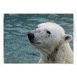 Tarjeta de felicitación del perfil del oso polar