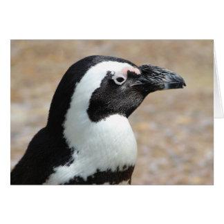 Tarjeta de felicitación del perfil del pingüino