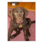 Tarjeta de felicitación del perrito de Labrador de
