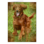Tarjeta de felicitación del perro de Irish Setter