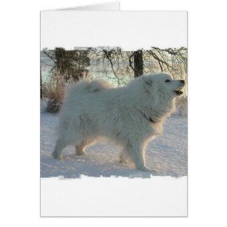 Tarjeta de felicitación del perro de los grandes P