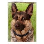 Tarjeta de felicitación del perro de pastor