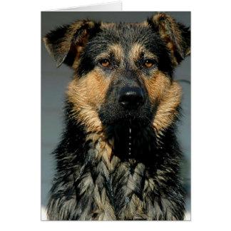 Tarjeta de felicitación del perro de pastor alemán