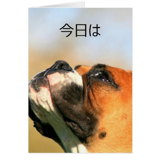 tarjeta de felicitación del perro del boxeador del