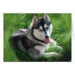 Tarjeta de felicitación del perro del husky siberi