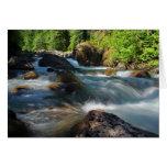 Tarjeta de felicitación del río de Stillaquamish