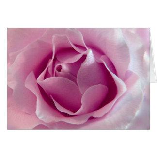 Tarjeta de felicitación del rosa color de rosa