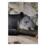 Tarjeta de felicitación del Tapir de Baird