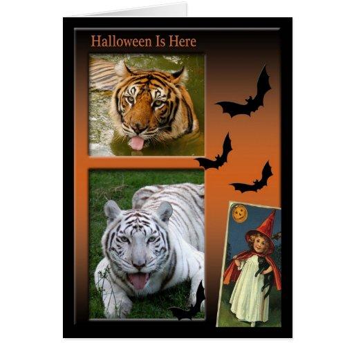 Tarjeta de felicitación del tigre de Halloween