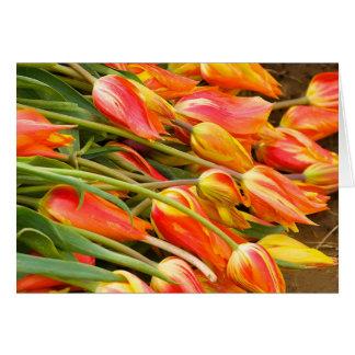 Tarjeta de felicitación del tulipán