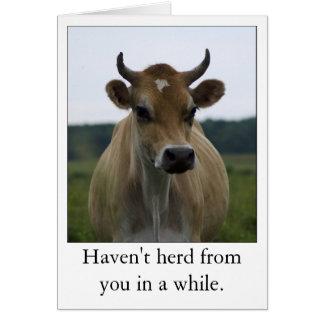 Tarjeta de felicitación divertida de la vaca de Br