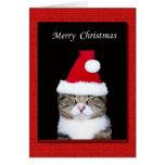 Tarjeta de felicitación divertida del navidad, gat
