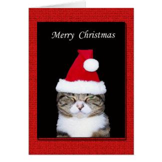 Tarjeta de felicitación divertida del navidad gat