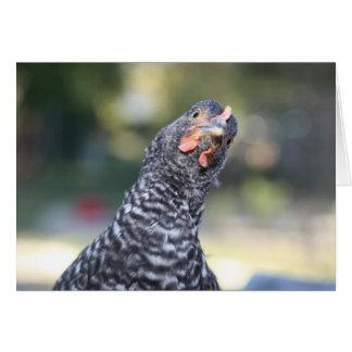 Tarjeta de felicitación divertida del pollo