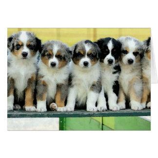 Tarjeta de felicitación en blanco de los perritos