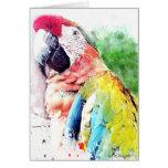 Tarjeta de felicitación en blanco del Macaw