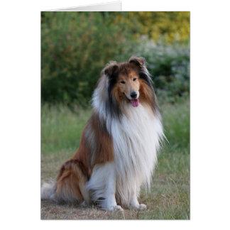 Tarjeta de felicitación en blanco hermosa del perr