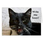 Tarjeta de felicitación:  Escriba pronto el gato