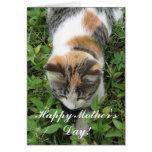 Tarjeta de felicitación feliz del gato de calicó d