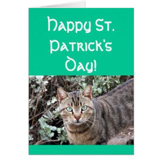 Tarjeta de felicitación feliz del gato del día del