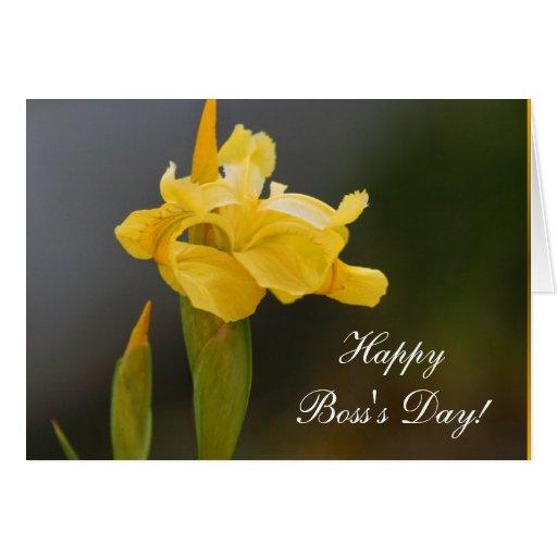 Tarjeta de felicitación feliz del iris del día de