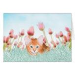 Tarjeta de felicitación floral del gatito