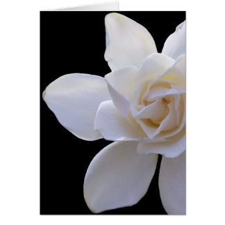 Tarjeta de felicitación - Gardenia en negro