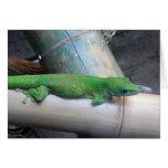 Tarjeta de felicitación gigante del Gecko del día