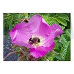 Tarjeta de felicitación hermosa de la abeja