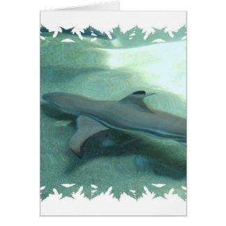 Tarjeta de felicitación inclinada negro del tiburó
