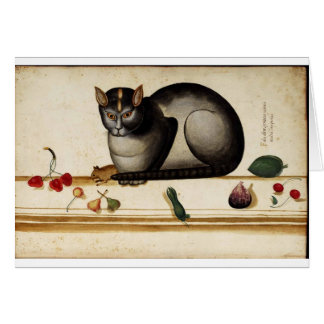 Tarjeta de felicitación italiana del gato