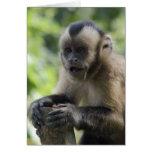 Tarjeta de felicitación juguetona del mono