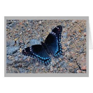 Tarjeta de felicitación - mariposa de Swallowtail