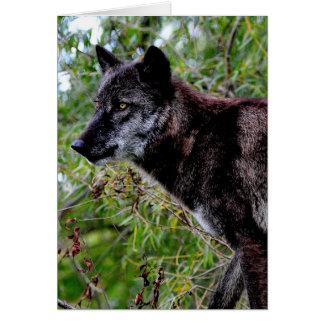 Tarjeta de felicitación negra del lobo