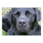 Tarjeta de felicitación negra del perro del labrad