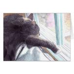 Tarjeta de felicitación perezosa del gato