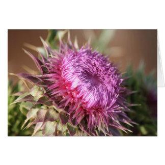 Tarjeta de felicitación púrpura del cardo de Tejas