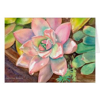 Tarjeta de felicitación rosada de Echeveria de