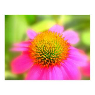 Tarjeta de felicitación rosada de la flor del cono postal