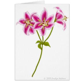 Tarjeta de felicitación rosada del lirio tigrado
